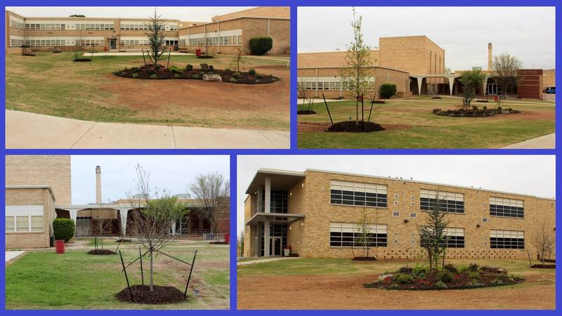 LEDA & LHS Donors Beautify Campus